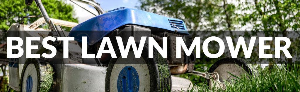 Best Lawn Mower Reviews of 2021