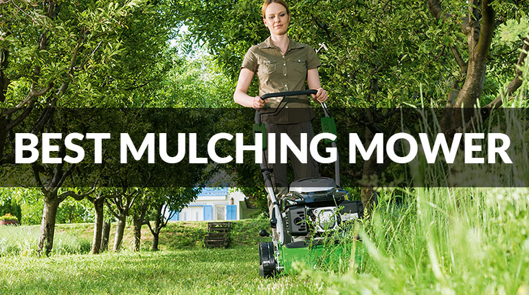 The Best Mulching Mower of 2017